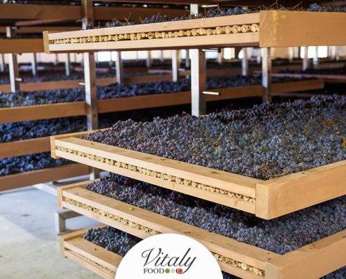 Amarone della Valpolicella Vitaly